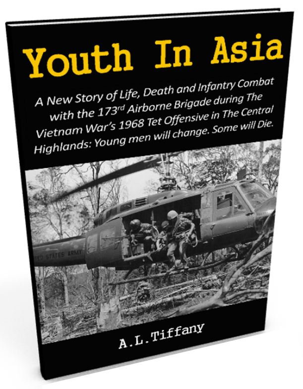 Vietnam War Novel